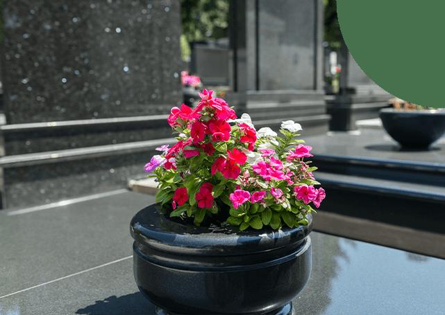 kwiaty nanagrobku